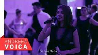Andreea Voica – Nunta Vanesa & Adrian – Brauri